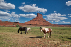 Horses in front of Moab mo copy