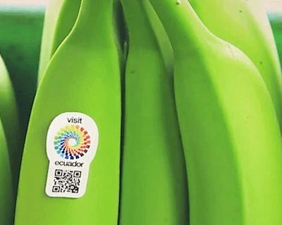 Ecuador Going Bananas Over Tourism Promotion Mike S