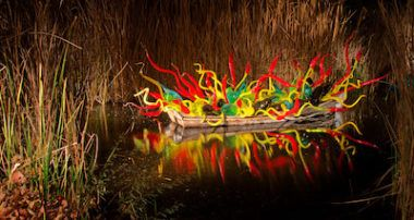 Chihuly exhibit at Desert Botanical Garden