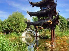 Hangzhou Global Tour: Day eight