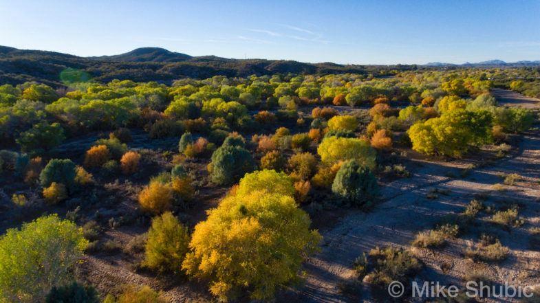 haysampa-river2-fall-foliage-copyright-2