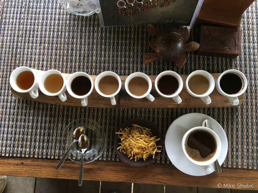 Civet Coffee tasting at Bali Pulina plantation in Ubud - Photo by MikesRoadTrip.com