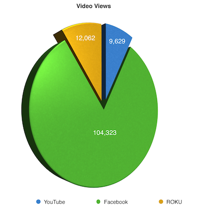 Janesville video views pie chart