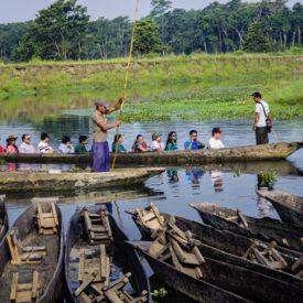 Chitwan Safari, next stop on the cultural road trip through Nepal