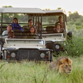Discover true wilderness at the Central Kalahari Game Reserve in Botswana