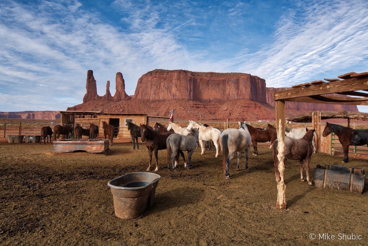 horses monument valley copy
