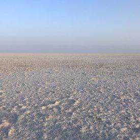 How I almost got stranded in the Great Rann of Kutch White Desert